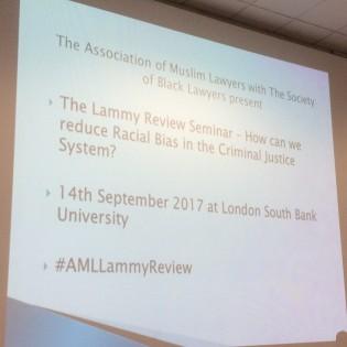 Lammy review slide